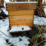 bijenindesneeuw